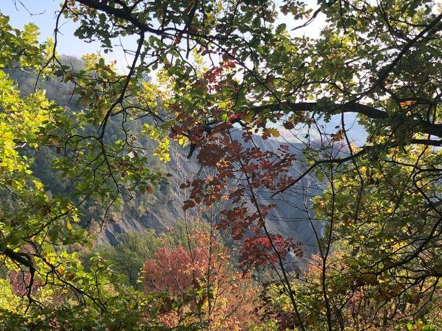 The Ramblers' Geology Walk on 10 November