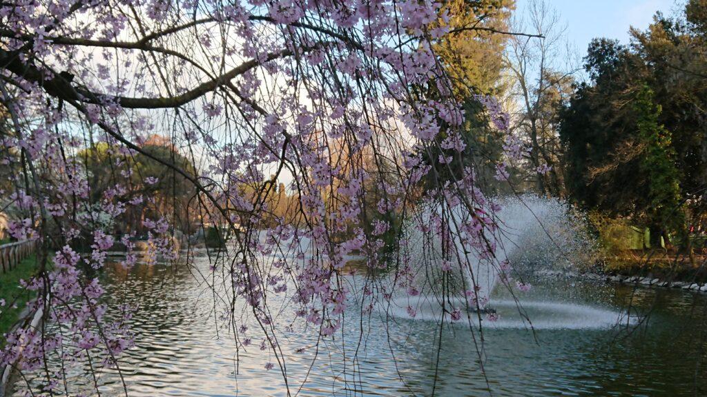 Giardini Margherita - photo by Silvia